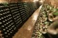 De la strugure, la vinul din cramă/ Finanțare UE de peste 47,7 milioane de euro anual, până în 2018