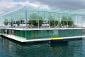 Agricultură – mediu/ Fermă plutitoare în Olanda pentru producerea de lactate