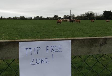 Inf. 133 - Referendum TTIP IRlanda
