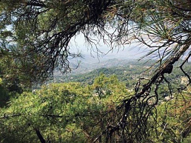13 - Olivier Henry - Labraunda panorama