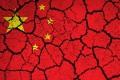 """China, Occidentul și """"lumea de mâine"""""""