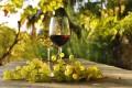 """Vinul """"Adamclisi"""" din România a fost înscris în Registrul denumirilor de origine protejată al UE"""